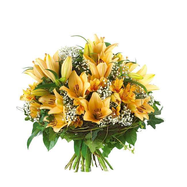 http://www.buketone.ru/image.php?main=img/flowers/buketi/full/2_5.jpg&watermark=modules/watermark/watermark.png&src=test.jpg